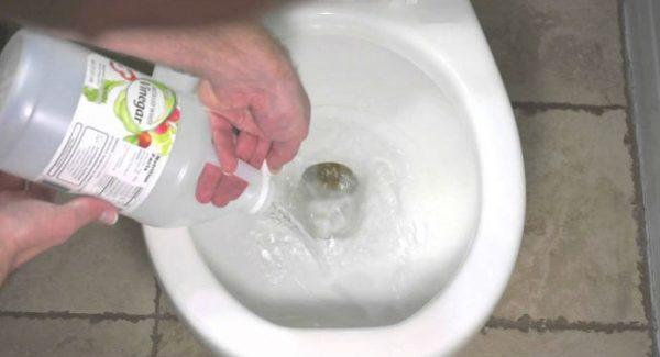 vinagre vaso sanitário privada